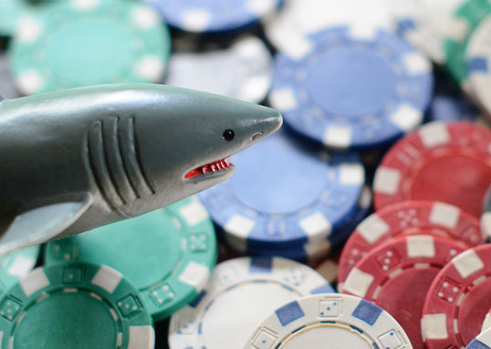 You aren't going to find many sharks guarding these real-money freerolls.