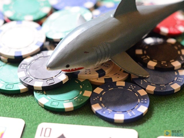 When you are playing against maniacs, you will often find yourself facing difficult decisions, especially preflop