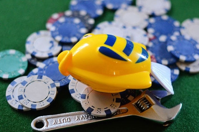 The combination of televised poker, with all its glamour, and the availability of online poker caused the surge of the fish to the virtual felt, looking to follow in the footsteps of their heroes