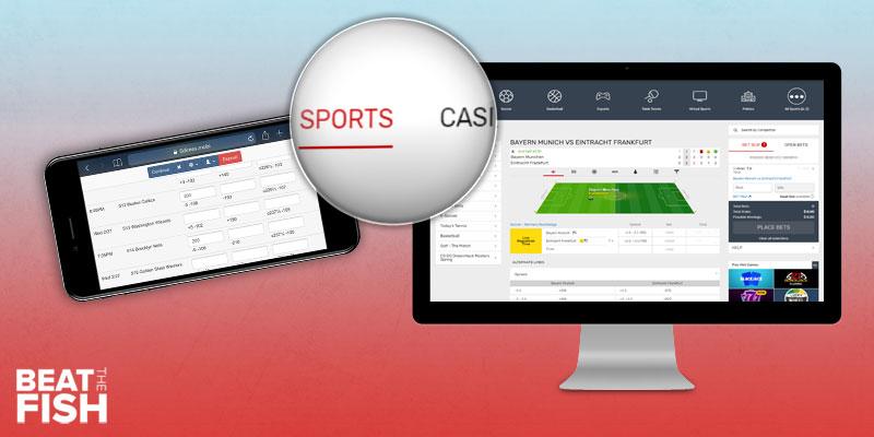 The Best Online Sportsbooks