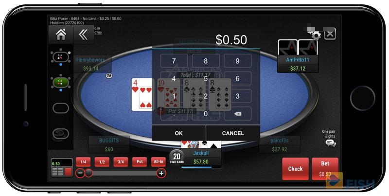Bet Size on Poker Cash Games