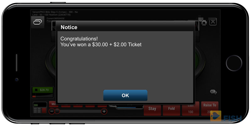 Winning a Satellite Tournament Ticket