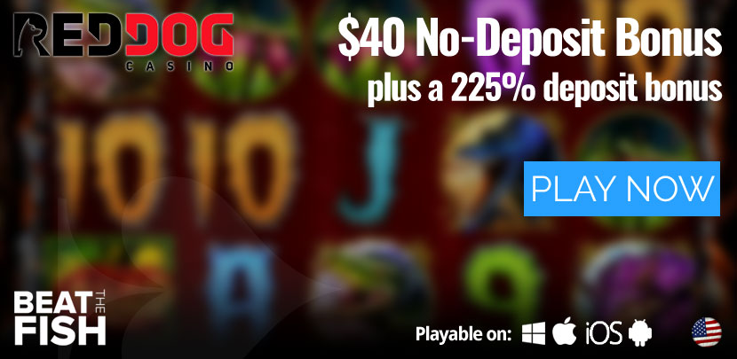 Play Now at Red Dog Casino